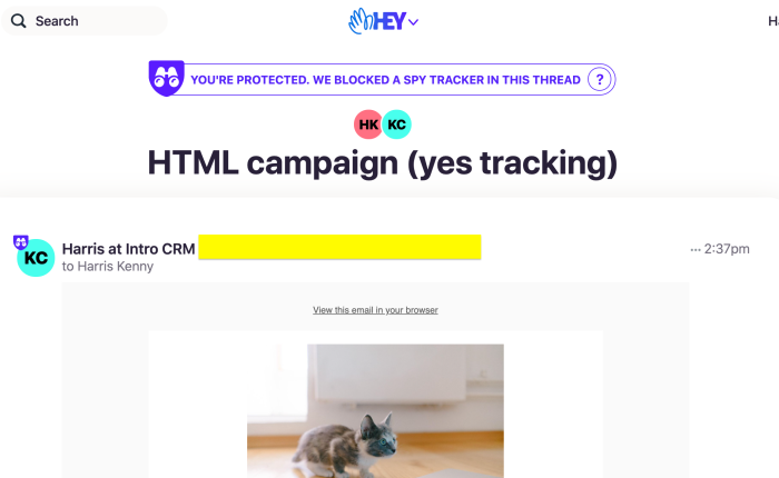 Tracker Testing HEY vs MailChimp: Can They Coexist?
